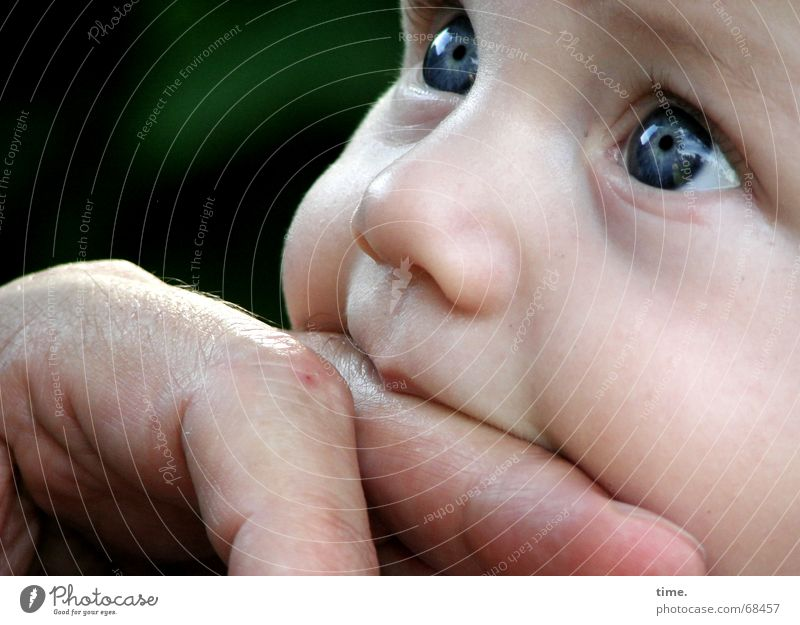 Child Man Face Adults Baby Fingers Curiosity Desire Contact Peace Trust Toddler Bite Cheek Suck