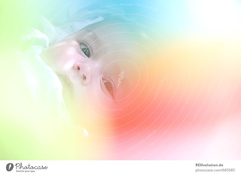 My baby's with me. Is that clear? Human being Child Baby Head 1 0 - 12 months Family & Relations Offspring Colour photo Multicoloured Interior shot Light Blur
