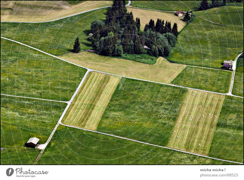seen from above ... Field Meadow Tree Lanes & trails Bird's-eye view Small Clear Hut Net