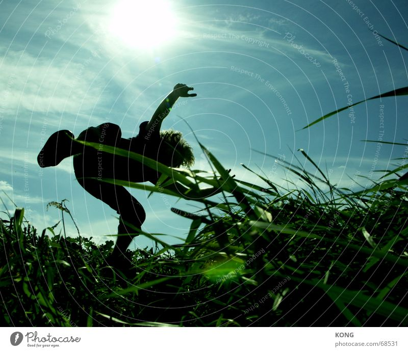 just drop it. Back-light Jump Hover Grass Meadow Green Hongkong Blade of grass Sky Aviation Flying Nature hippy fly flight Blue Dynamics Movement