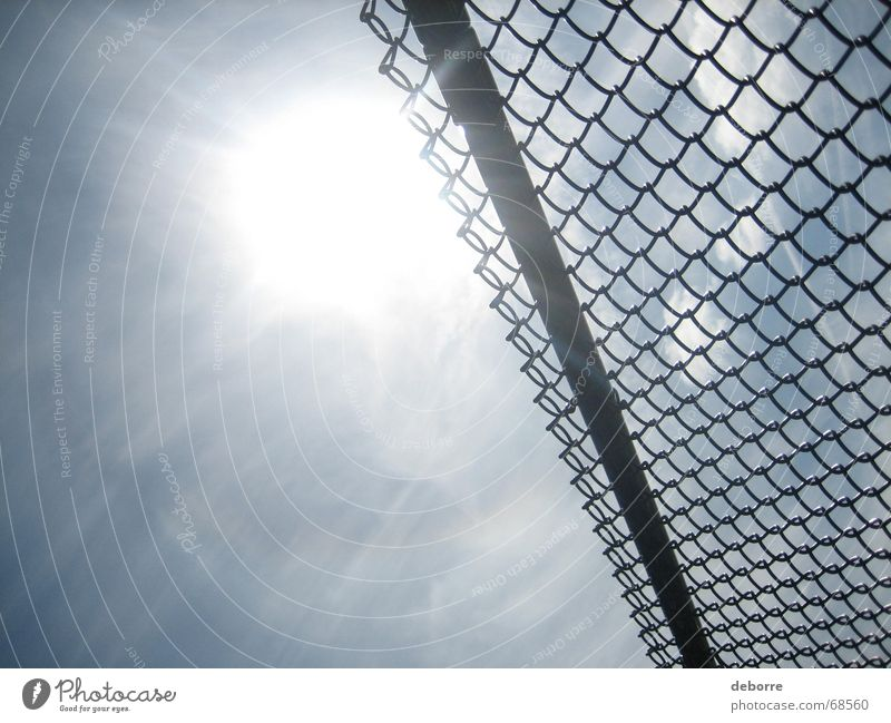 Looking up at the sun and blue sky through a chain link fence. Fence Wire netting Wire netting fence Border White Sun Sky Level Tall Divide Blue