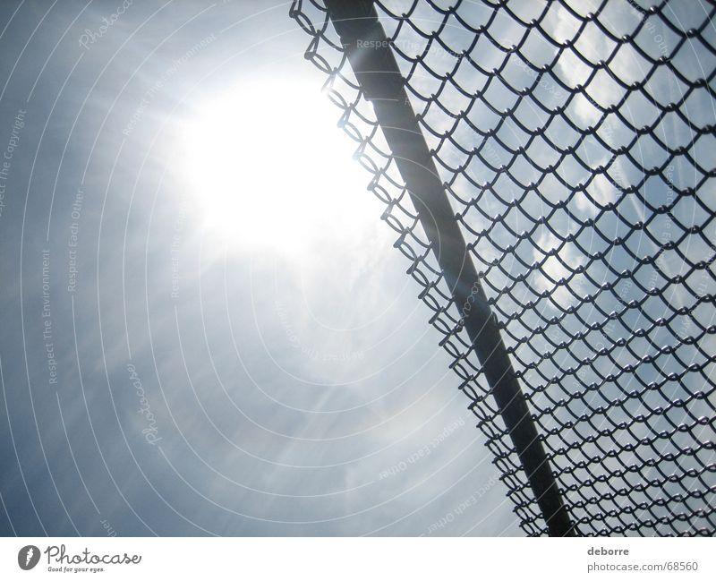The fence Fence Wire netting Wire netting fence Border White Sun Sky Level Tall Divide Blue