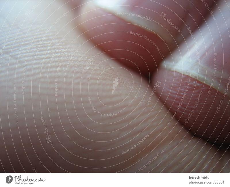 Hand White Skin Pink Fingers Clean Tracks Furrow Fingernail Nail Forefinger Skin color Fingerprint Ring finger