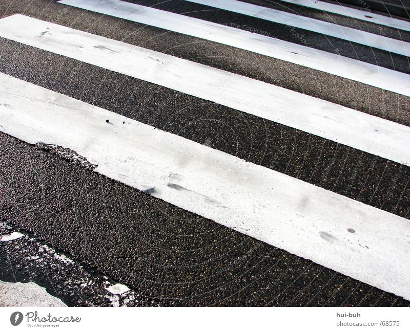 Hand White Black Street Line Signs and labeling Walking Floor covering Asphalt Striped Traffic light Left Tar Pedestrian Right Zebra