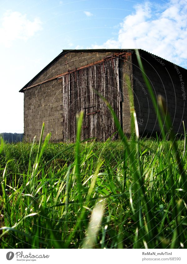 timidity Barn Grass Green Farm Light Field Clouds Sliding gate Roof Wall (barrier) Sky Blue Landscape Graffiti Sun Warehouse