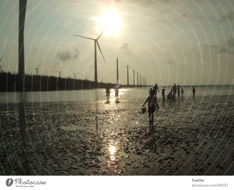 Far-off places Beach Warmth Romance Asia Physics Mud flats Taiwan Science & Research