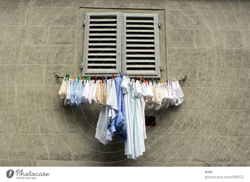 Window Dirty Rope Clean To hold on Store premises Laundry Underwear Panties