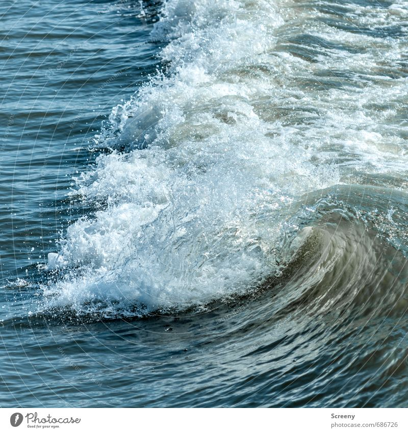North Sea. On the water... Vacation & Travel Tourism Trip Summer Summer vacation Ocean Waves Nature Elements Water Crest of the wave Fluid Blue White Power