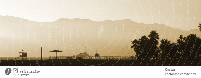 Ocean Beach Clouds USA Sunshade Palm tree California