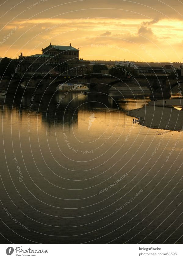 Human being Water Sky Sun City Clouds Building Watercraft Moody Bridge River Dresden Elbe Famousness Old town
