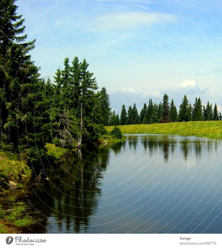 Nature Water Beautiful Tree Green Joy Vacation & Travel Calm Loneliness Far-off places Forest Relaxation Meadow Mountain Lake Landscape