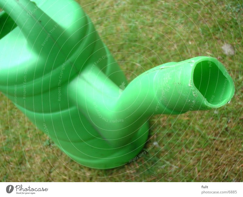 Green Living or residing Watering can