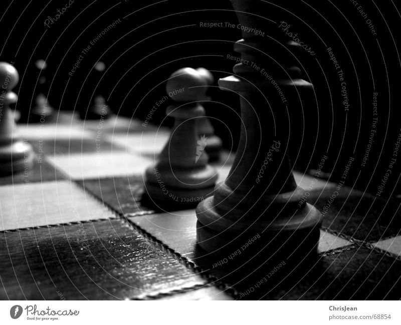 Old White Calm Dark Playing Field Fear Lie Tracks Chessboard Pull Lose Stagnating Beat