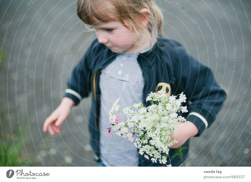 Flowers - for you Mother's Day Birthday Child Toddler 1 Human being 1 - 3 years 3 - 8 years Infancy Blonde Long-haired Carrying Fragrance Friendliness Nature