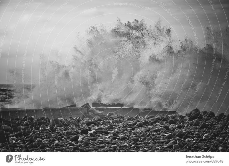Puerto de la Cruz / Tenerife X Environment Nature Gale Waves Coast Ocean Island Aggression Esthetic Threat Fluid Gigantic Rebellious Anger Swell Undulation