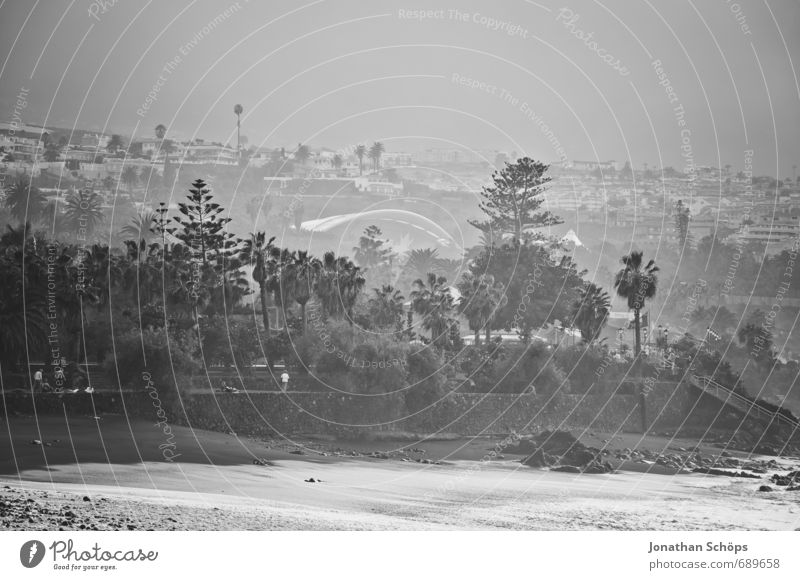 Puerto de la Cruz / Tenerife XIII Environment Nature Waves Coast Ocean Island Esthetic Swell White crest Inject Sea water Water Canaries Black & white photo
