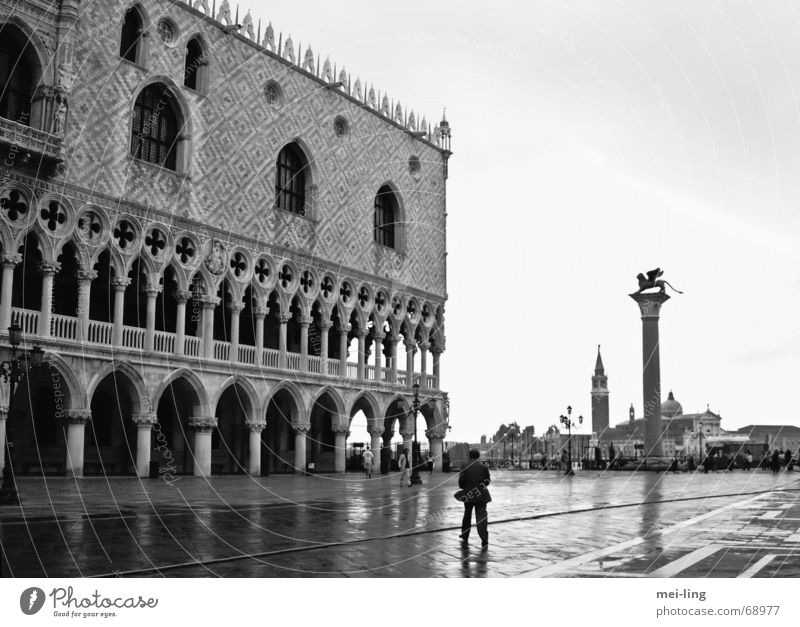 quiet, please Basilica San Marco Venice Palace of Doge Calm Gothic period Morning Vacation & Travel Venezia lion of san marco Black & white photo doge