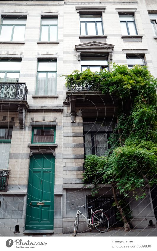 Green Plant House (Residential Structure) Movement Architecture Bright Facade Door Living or residing Bicycle Perspective Fitness Friendliness Retro Cycling Driving
