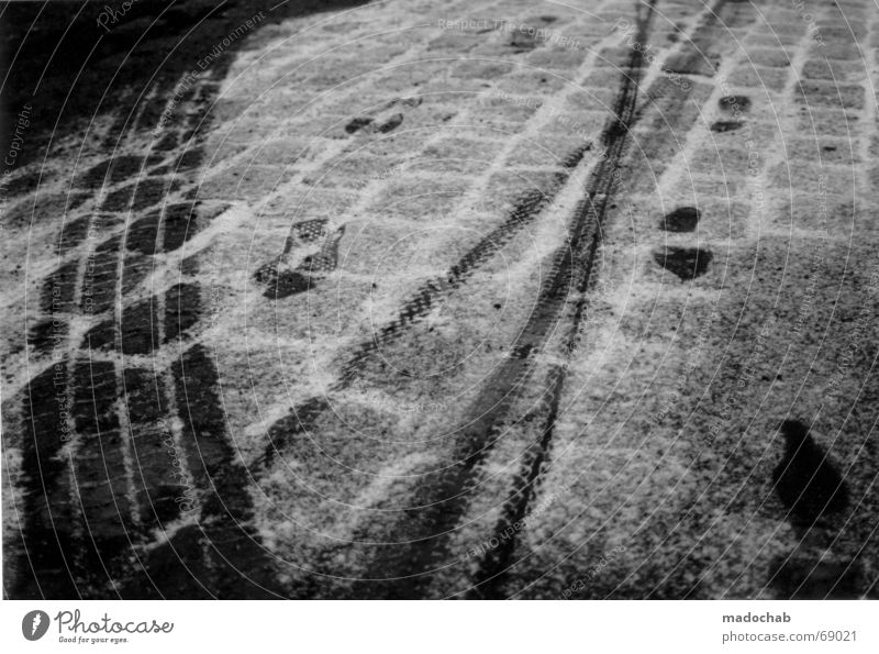 Winter Cold Snow Movement Search Transport Asphalt Tracks Transience Freeze Footprint Stride Traffic lane Printed Matter Native Americans Pursue