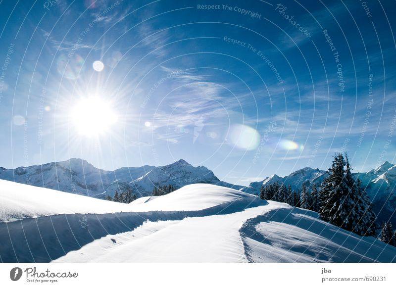 Nature Vacation & Travel Water Loneliness Landscape Calm Winter Cold Mountain Life Snow Tourism Beautiful weather Elements Peak Alps
