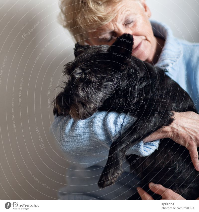 Dog Human being Woman Loneliness Calm Animal Adults Life Senior citizen Emotions Love Friendship 45 - 60 years Communicate Touch Protection