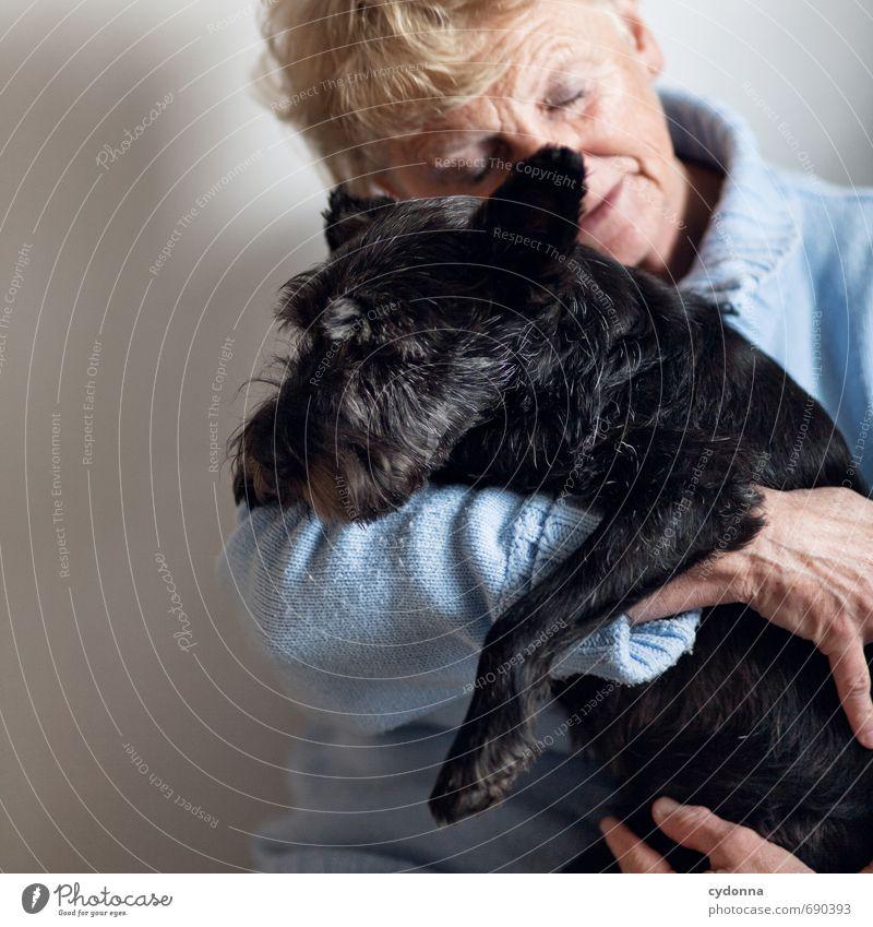 love of animals Harmonious Human being Female senior Woman Friendship Senior citizen Life 45 - 60 years Adults Animal Dog Relationship Emotions Communicate Love