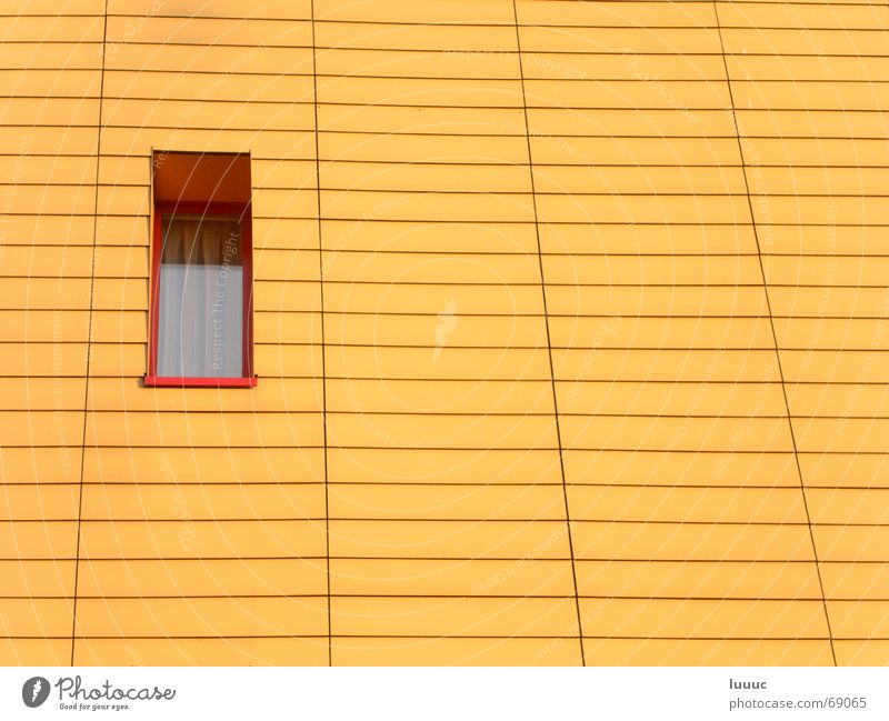 Wall (building) Window Warmth Line Small Empty Physics Curtain Neighbor Narrow Sparse Regular Sunlit