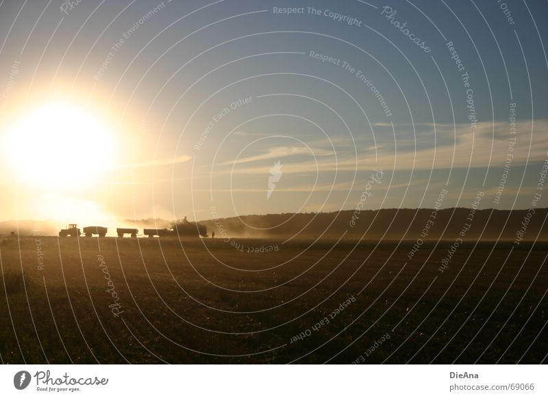 Sky Nature Sun Summer Field Beautiful weather Agriculture Harvest Farmer Dusk Dust Tractor Carriage Followers August Evening sun