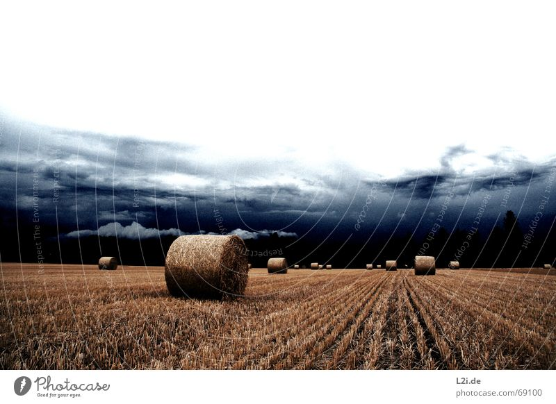 HATE IS THE HARVEST Clouds Field Straw Hay bale Bale of straw Round Yellow Sky Go under Apocalypse Summer Autumn Seasons Creepy Nature Grain Harvest Blue Shadow