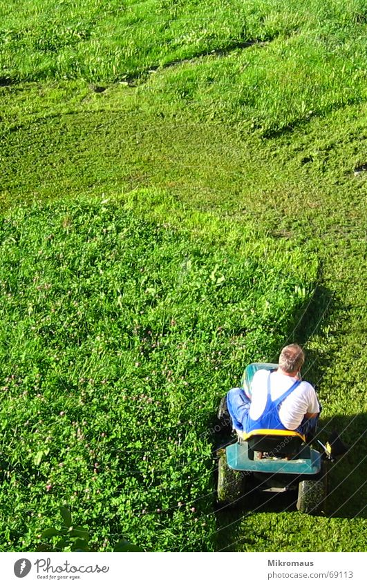lawnmower man Lawn Lawnmower Man Green Meadow Shadow Evening sun Working clothes Mow the lawn Reap Cut Abbreviate Grass surface Summer Work and employment Crash