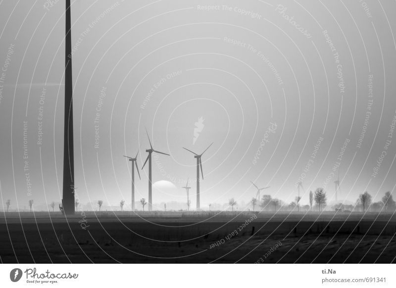 births Wind energy plant Landscape Sunrise Sunset Spring Grass Meadow Field Rotate Large Sustainability Black Silver White Horizon Tourism Environment