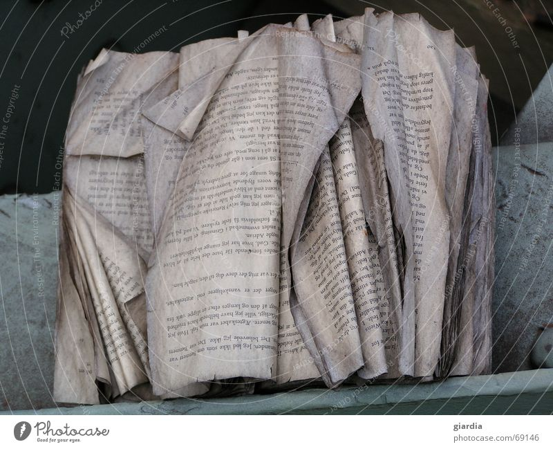 Old Book Weather Paper Reading Floor covering Letters (alphabet) Transience Write Sign Wrinkles Decline Hedge Effect Scrap