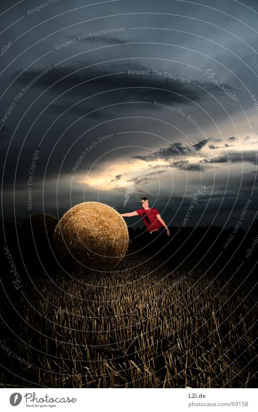 Woman Sky Nature Blue Sun Clouds Landscape Far-off places Yellow Freedom Field Gold Round To hold on End Grain