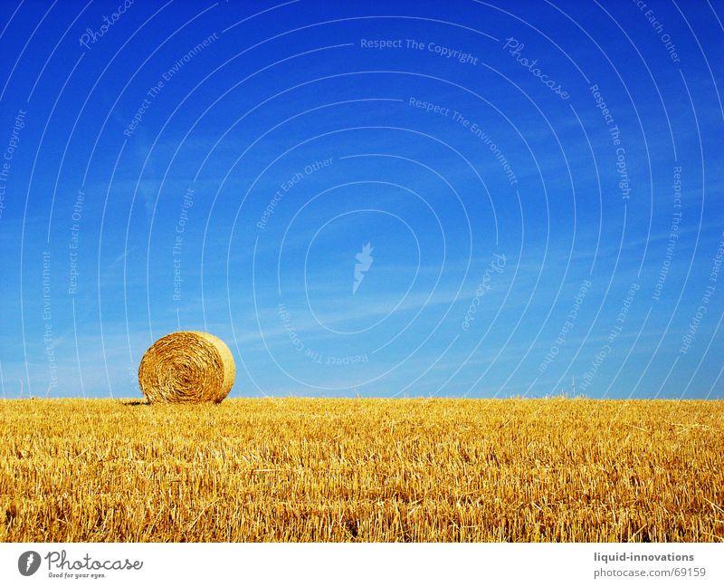 Sky Blue Field Gold Straw Bale of straw Roll of straw