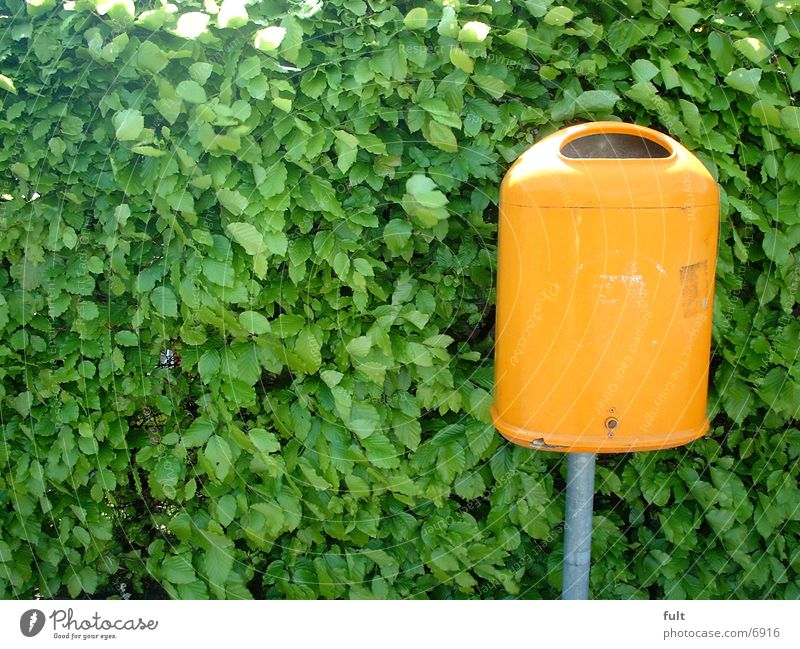 Green Leaf Orange Things Trash container