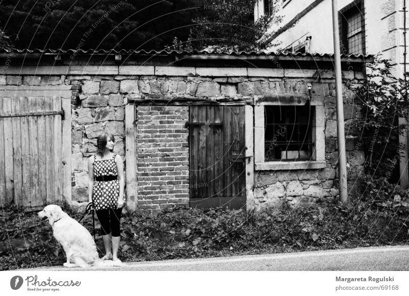 Woman Street Window Dog Dress Point