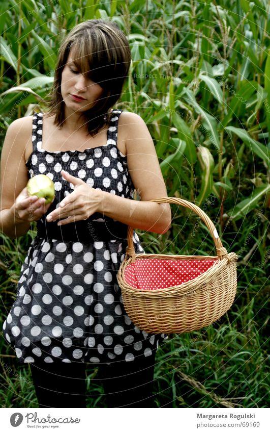 Woman Red Dress Point Apple Basket Maize field