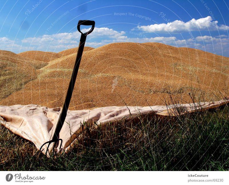 Dune building in Denmark Spade Shovel Covers (Construction) Border Blue sky Sand Lawn Beach dune Mountain
