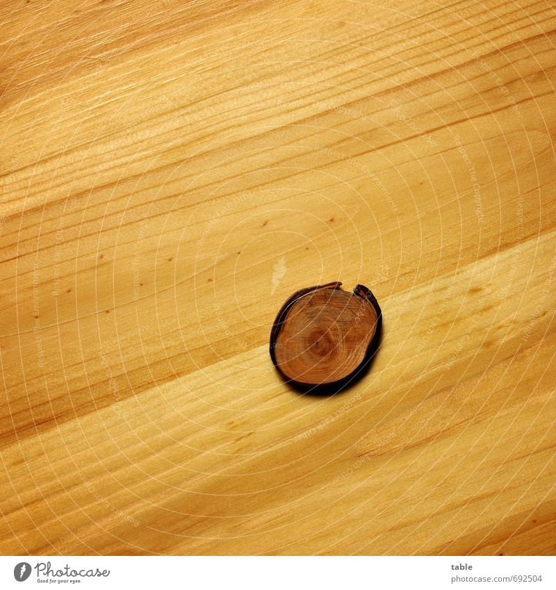 Wooden eye . . . Nature Plant Tree Sign Line Lie Old Esthetic Large Small Natural Beautiful Serene Calm Loneliness Contentment Uniqueness Creativity