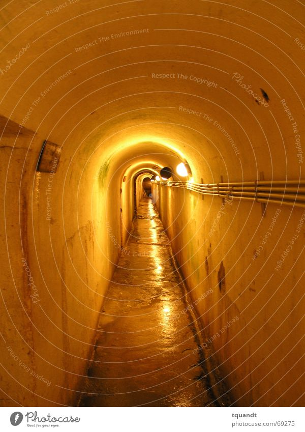 Yellow Tunnel Narrow Appearance Subsoil Dugout