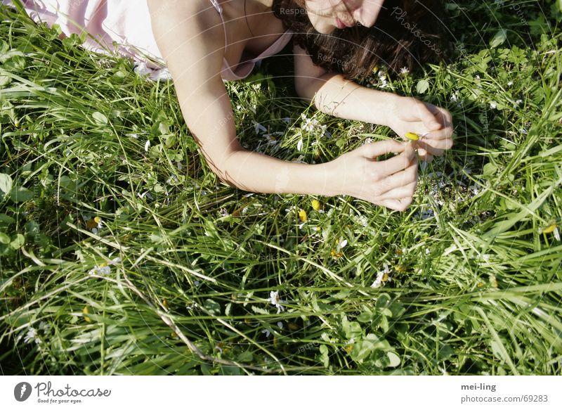 he loves me Summer Grass Daisy Woman