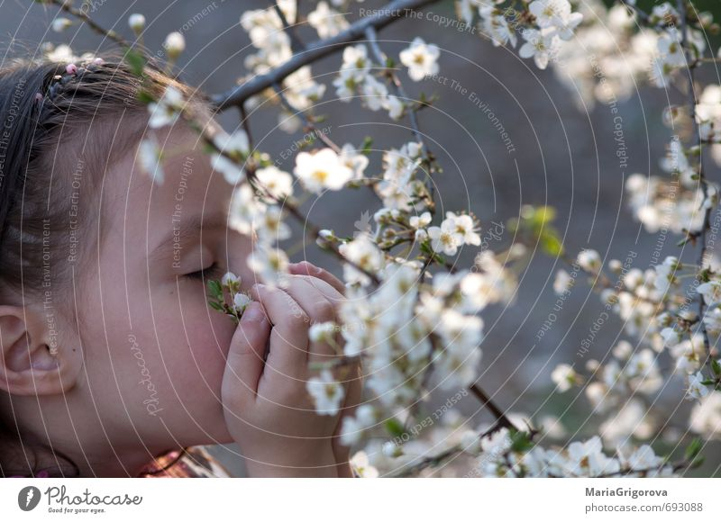 Spring sense Freedom Garden Child Girl Face 1 Human being 3 - 8 years Infancy Nature Sun Beautiful weather Tree Blossom Blossoming Happiness Good Natural Cute