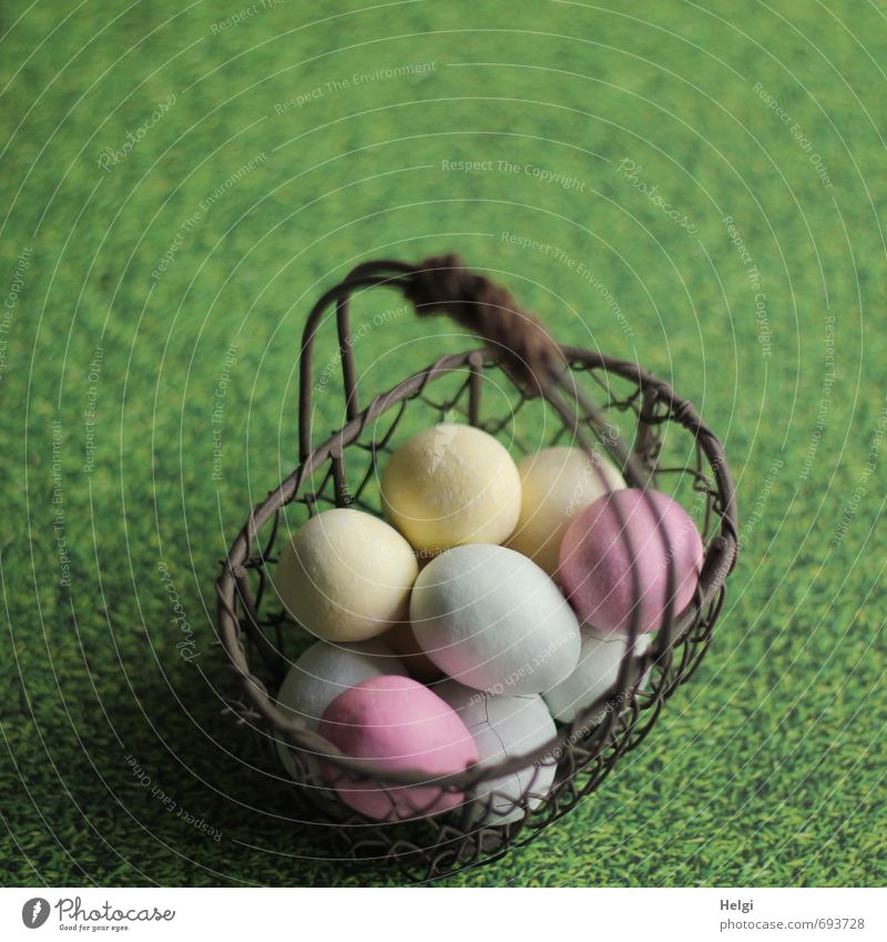 collected... Food Candy Egg Easter egg Nutrition Grass Meadow Decoration Basket Wire basket Metal Lie Stand Esthetic Exceptional Uniqueness Delicious Brown