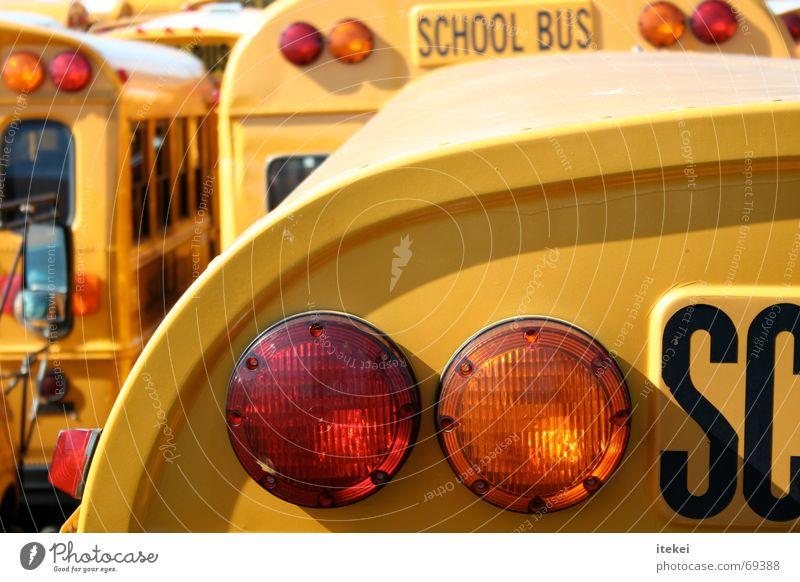 Yellow School USA Logistics Americas Student Bus Rear light Brake light School bus