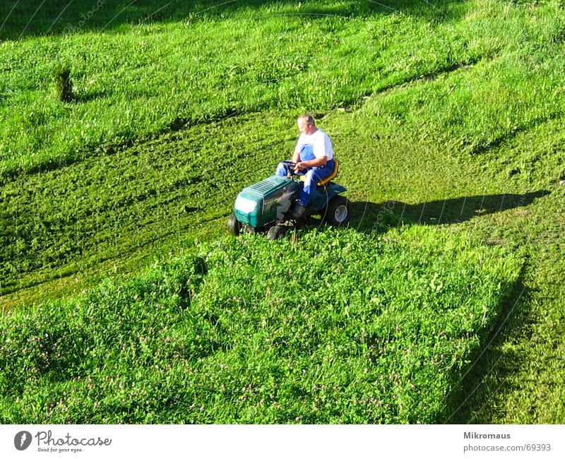 Lawn Mower Man 2 Lawnmower Green Meadow Shadow Evening sun Working clothes Mow the lawn Reap Cut Abbreviate Grass surface Summer Work and employment Crash