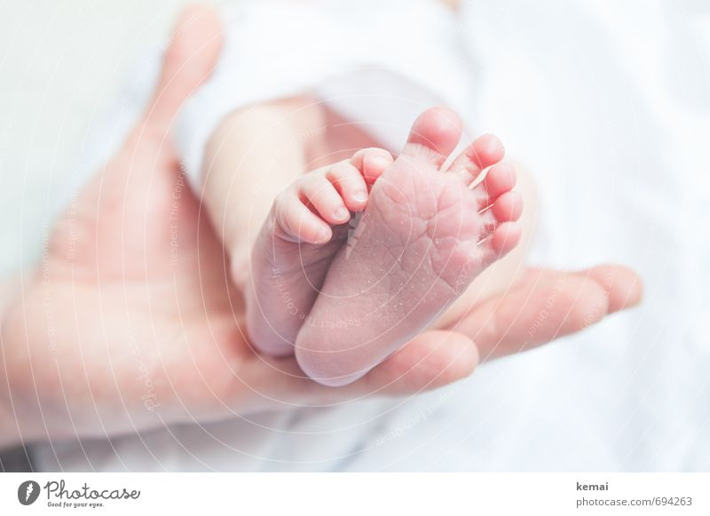 White Hand Calm Life Emotions Small Bright Feet Pink Family & Relations Infancy Fresh Baby Cute Trust Safety (feeling of)