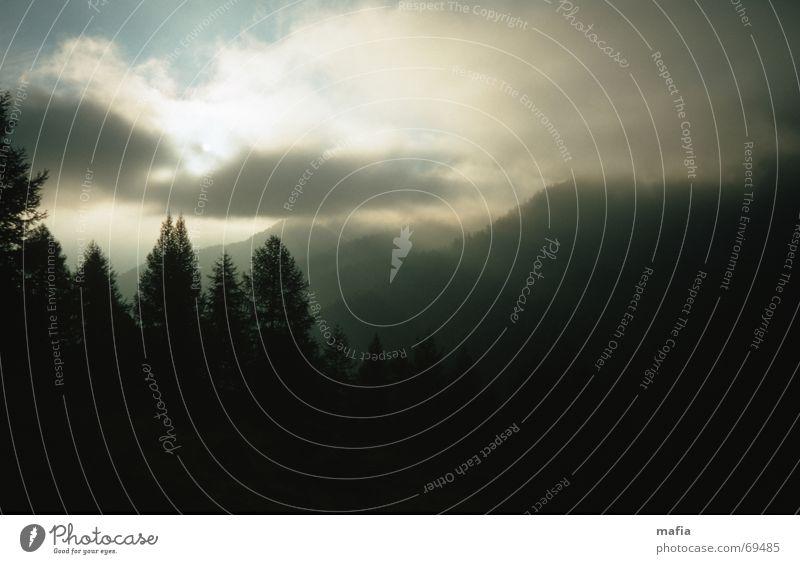 Sky Tree Sun Clouds Mountain Landscape Weather Alps Turnaround