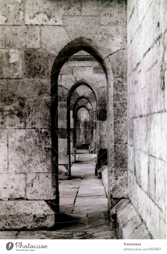 Regensburg Religion and faith Dome Regensburg Cathedral St. Peter black-white Wall (barrier) Old Corridor