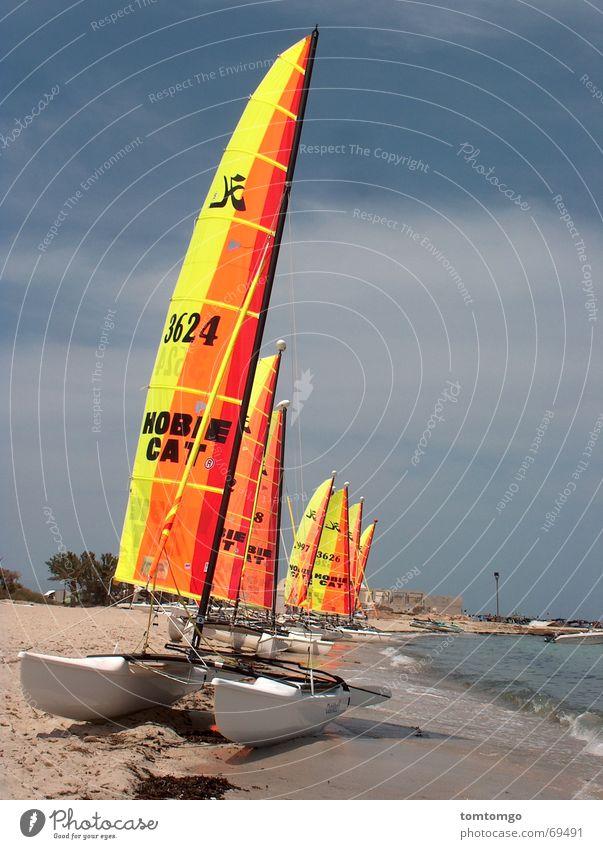 Beach Calm Waves Multiple Electricity pylon Sail White crest Stranded Catamaran