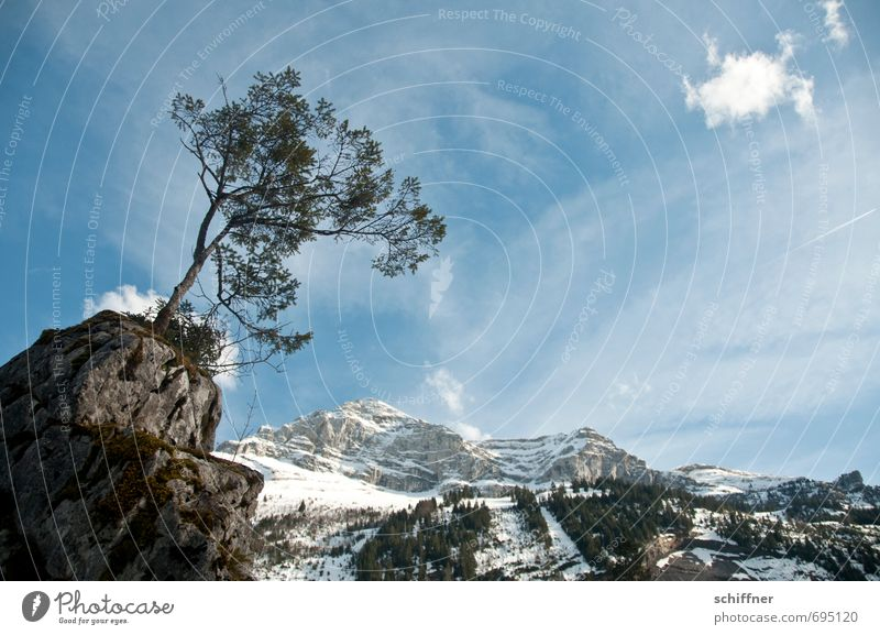 Sky Nature Blue Plant Tree Landscape Clouds Winter Cold Environment Mountain Snow Rock Ice Weather Climate